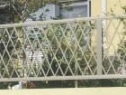 ニューカムフィ4型 三協立山アルミ